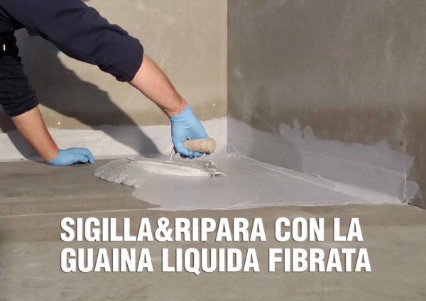 sigillaguainagrigia2_compressed
